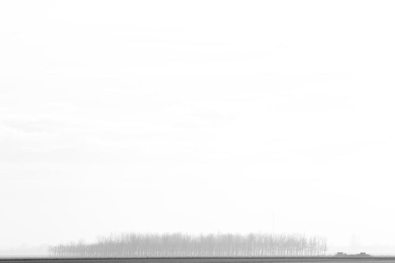 landscape (18)