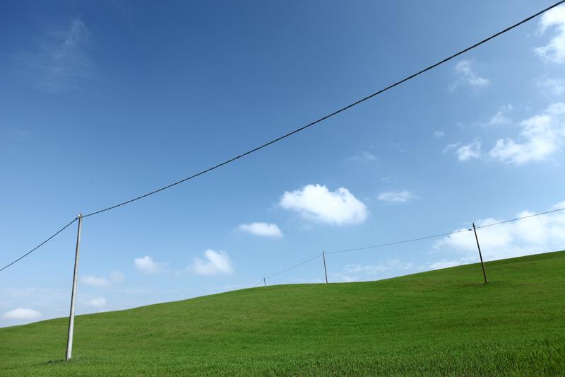 landscape (48)