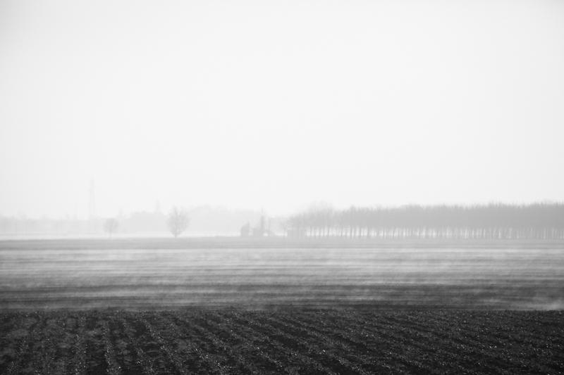 landscape (59)