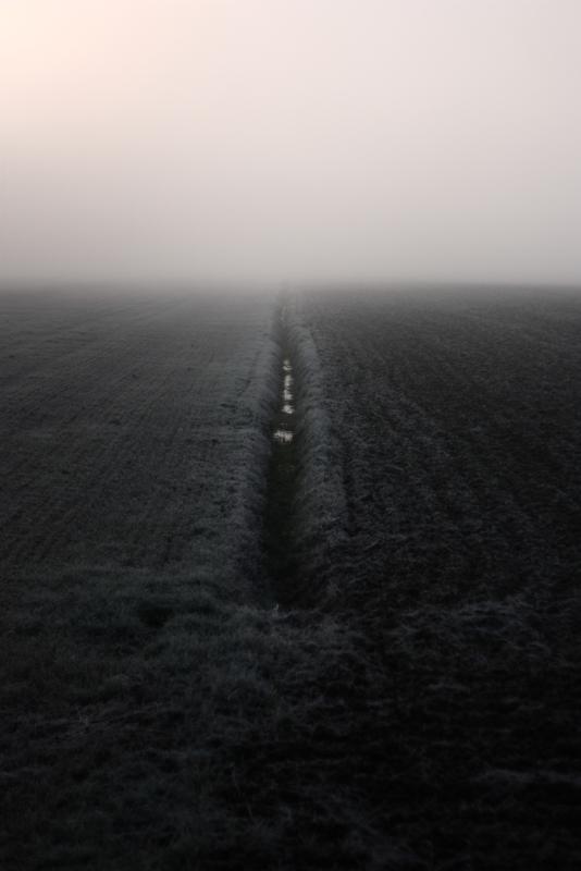 landscape (72)